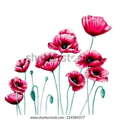 Red Poppies are against a white background in an acrylic painting on canvas as the right panel of a diptych.