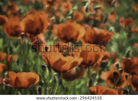 Red Poppies in a Field in Tuscany that Look Like an Impressionistic Painting - stock photo
