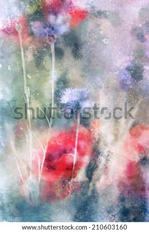 Red poppy and blue flowers watercolor illustration - stock photo