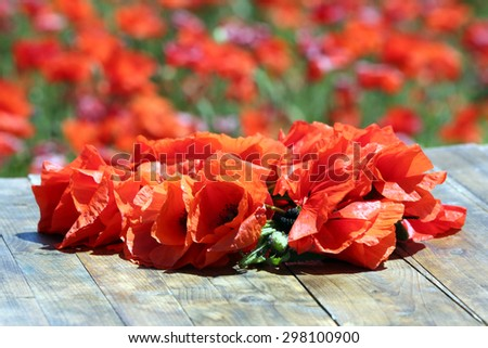 Red poppy flowers on wooden board, closeup - stock photo