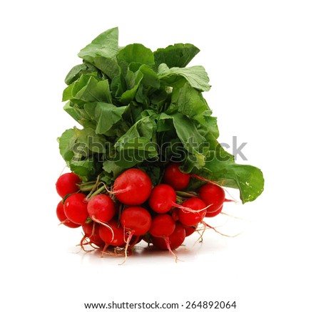 Red radish. Isolated over white background - stock photo