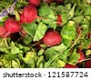 Red Radish with Green Leaves Background - stock photo