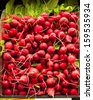 Red radishes in a pile - stock photo