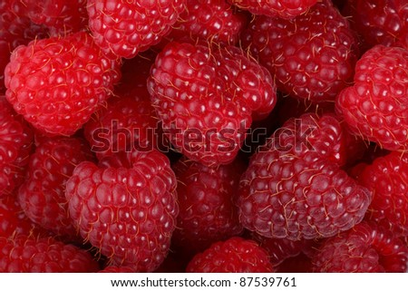 red raspberries closeup, shooted in photo studio - stock photo