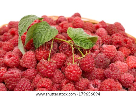 red raspberries with green leaves - stock photo