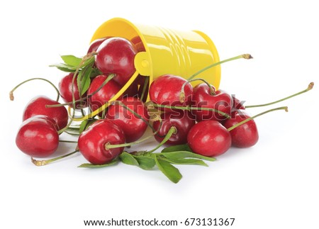 red ripe cherries in yellow bucket isolated on white background, close up