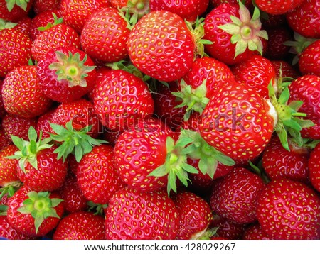 Red ripe strawberries for the background.