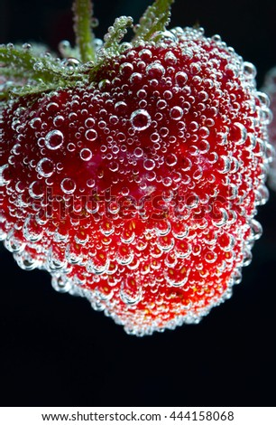 Red ripe strawberry with water bubbles, closeup - stock photo