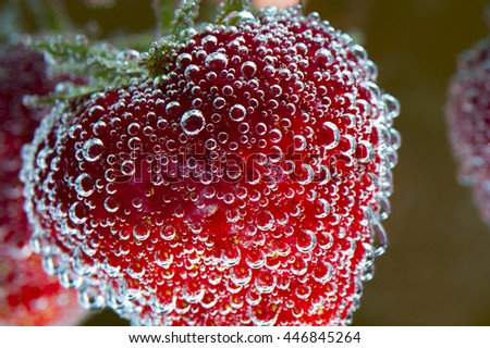 Red ripe strawberry with water bubbles, macro - stock photo