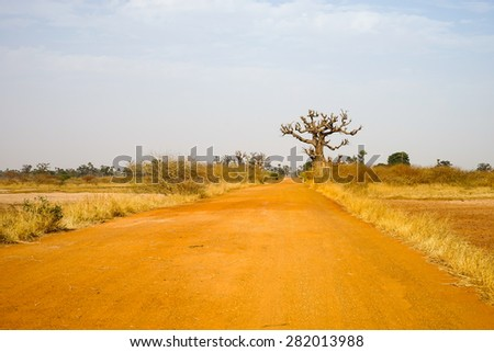 Red road with lonely baobab tree on the way from Joal Fadeouth to Samba Dia in Senegal