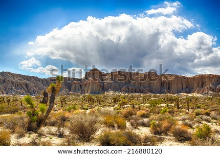 Red Rock Canyon State Park features scenic desert cliffs, buttes and spectacular rock formations. The park is located where the southern tip of the Sierra Nevada converges with the El Paso Mountains. - stock photo