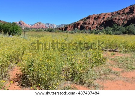 Red Rock Crossing Park in Sedona, AZ USA