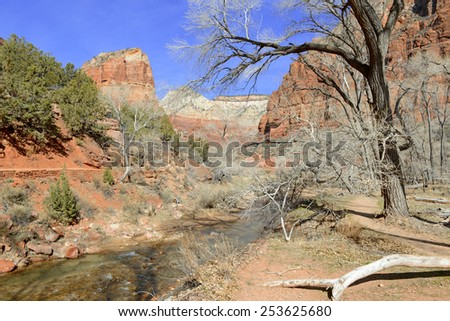 Red rock landscape in Zion National Park, southern Utah - stock photo