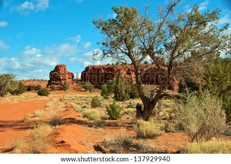 Red Rock Mountains are  beautiful along the path on a sunny spring day. - stock photo