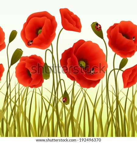 Red romantic poppy flowers and grass with ladybugs wallpaper  illustration. - stock photo
