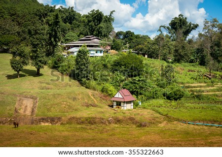 Red roof houses in Thailand national park / Horizontal