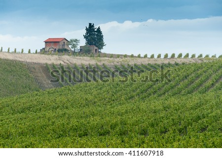 red roofed stone hut and three trees on top of ridge with vineyards covering slopes, stormy skies and 5 distant birds