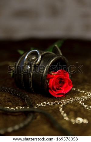 red rose and bdsm toys - stock photo