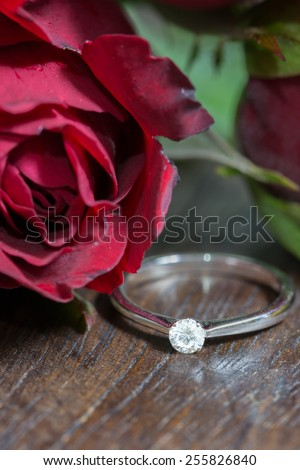 Red rose and diamond ring - stock photo