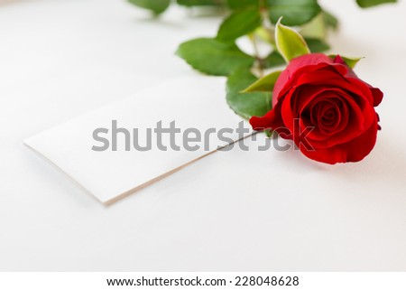 Red rose and invitation card - stock photo