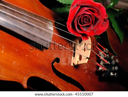 Red Rose and Old Violin - Making Music