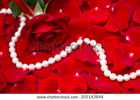 Red rose and pearls - stock photo