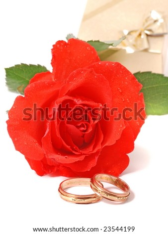 red rose and wedding bands isolated on white. - stock photo