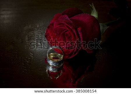 Red rose and wedding rings isolated on black background - stock photo