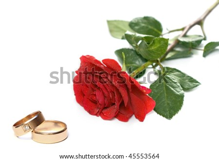 Red rose and wedding rings isolated on white - stock photo