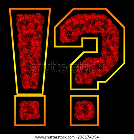 Red Rose exclamation mark and question mark  - stock photo