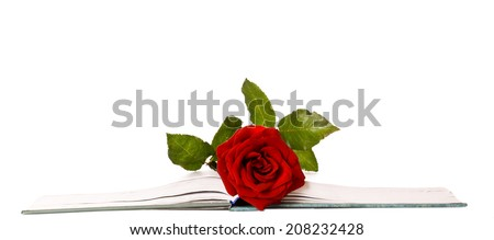 Red Rose in Between Book Pages isolated white background - stock photo
