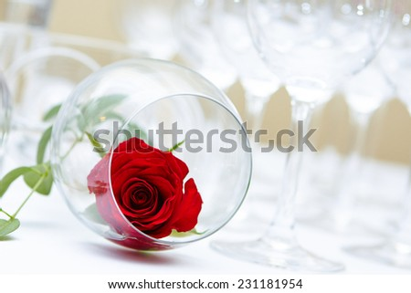 Red Rose in Wine Goblet. Beautiful wedding decoration - stock photo