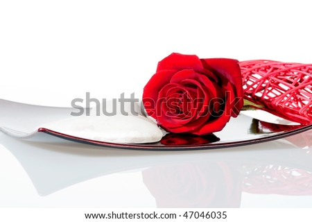 Red rose on a white background with shallow