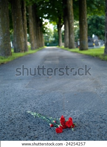 Red rose on the ground - stock photo