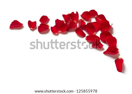 Red rose petal border on white background - stock photo