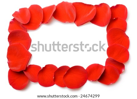 Red rose petals frame isolated on white background - stock photo