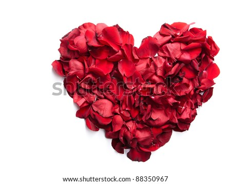 Red rose petals making up heart in isolation - stock photo