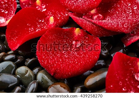 Red rose petals on stones background - stock photo
