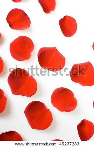 Red rose petals on white for valentine's day.