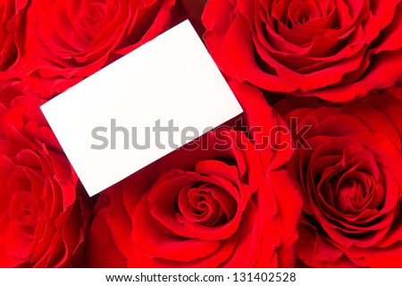 Red roses and blank card close up