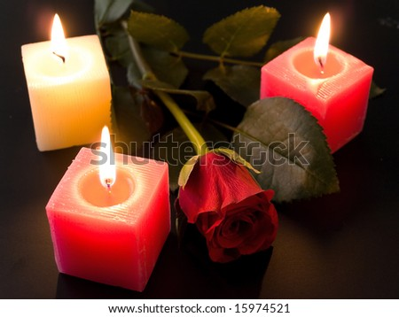 red roses and candles in the night