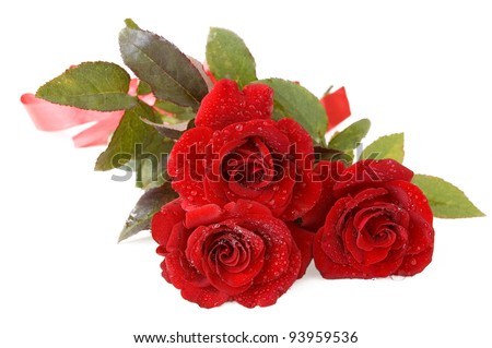 Red roses bunch with water drops isolated on white