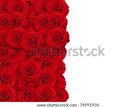 red roses frame over white background, copyspace - stock photo