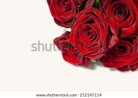 Red roses isolated on white background. Gift card concept