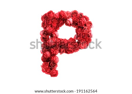 Red roses letter P, isolated on white background - stock photo