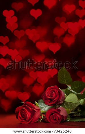 red roses on a background of defocused lights - stock photo