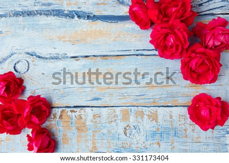 Red roses on blue wooden background