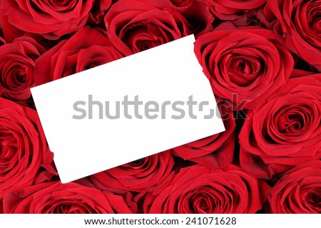 Red roses on Valentine's or mothers day with empty sign and copyspace for your own text - stock photo