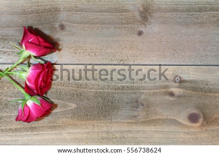 Red Roses on Wood Background - Photograph of red roses along the side of a wood background.  Blank space for text. Great for Valentine's Day!