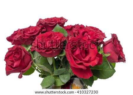 red roses over a bright background / red roses - stock photo